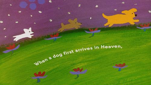 Alan Powell Corona Diaries #10: Dog Heaven