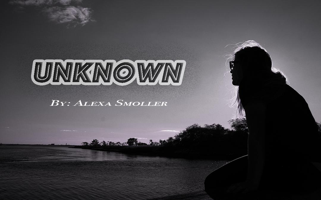 Alexa Smoller – Blog #3