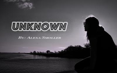 Alexa Smoller – Blog Post #4