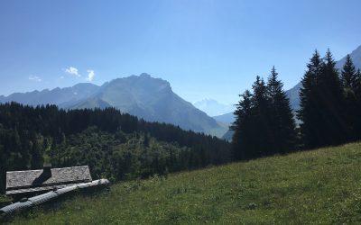 Nikolia Kachuyevski  : Blog Post #2